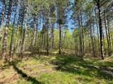 4511 Hagfors Road - Photo 12