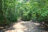 xxx Navillus Forest Land - Photo 4