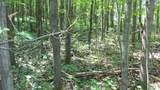 LOT 2 Birch Haven Rd - Photo 5