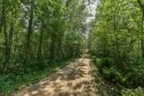 Parcel B Deer Lane - Photo 10