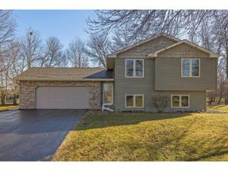 4810 Ranchview Lane N, Plymouth, MN 55446 (#4797247) :: The Sarenpa Team