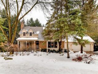 1384 Tamberwood Trail, Woodbury, MN 55125 (#4807719) :: The Preferred Home Team