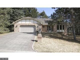 1325 Tamberwood Trail, Woodbury, MN 55125 (#4808012) :: The Preferred Home Team