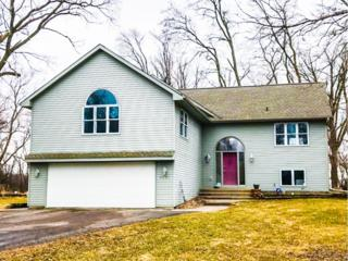 9607 201st Avenue NW, Elk River, MN 55330 (#4808569) :: Group 46:10 Twin Cities West