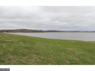 XXX Island Road SW, Urness Twp, MN 56339 (#4808571) :: Group 46:10 Twin Cities West