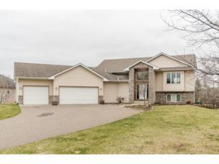 25478 161st Street NW, Big Lake, MN 55309 (#4816086) :: The Preferred Home Team