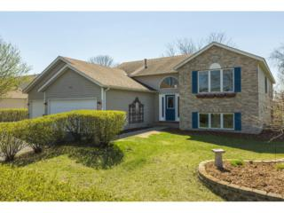 5298 193rd Street W, Farmington, MN 55024 (#4818639) :: The Preferred Home Team