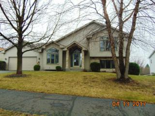 5314 193rd Street W, Farmington, MN 55024 (#4819001) :: The Preferred Home Team