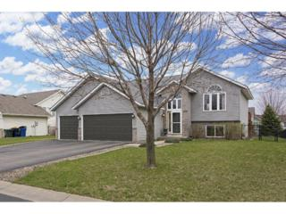 18748 Dylan Drive, Farmington, MN 55024 (#4819275) :: The Preferred Home Team