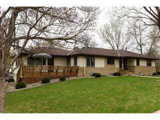 4201 Brookside Avenue, Saint Louis Park, MN 55416 (#4819301) :: The Preferred Home Team