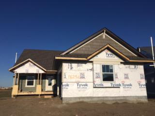 16256 Elmhurst Lane, Lakeville, MN 55044 (#4820072) :: The Preferred Home Team