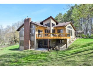 6329 Crackleberry Trail, Woodbury, MN 55129 (#4820087) :: The Preferred Home Team