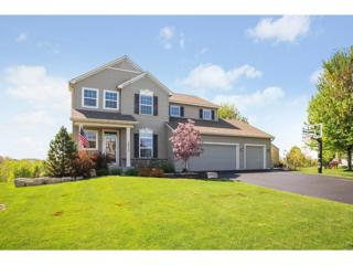 14215 Atwood Circle, Rosemount, MN 55068 (#4820149) :: The Preferred Home Team