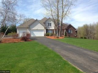 23110 Grandview Way, Lakeville, MN 55044 (#4820158) :: The Preferred Home Team