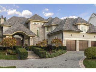 16103 Crosby Cove Road, Wayzata, MN 55391 (#4820199) :: The Preferred Home Team