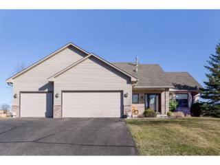 21182 Honeycomb Way, Lakeville, MN 55044 (#4820217) :: The Preferred Home Team
