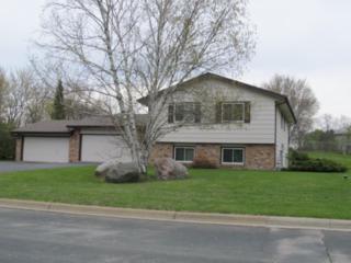 9335 152nd Street W, Savage, MN 55372 (#4820348) :: The Preferred Home Team