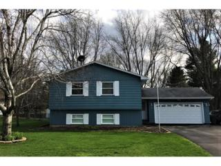 5950 Lower 182nd Street W, Farmington, MN 55024 (#4820501) :: The Preferred Home Team
