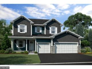 1623 River Rock Drive, Carver, MN 55315 (#4831446) :: Norse Realty