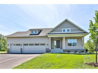 13838 Goodhue Avenue NE, Ham Lake, MN 55304 (#4832704) :: Team Firnstahl