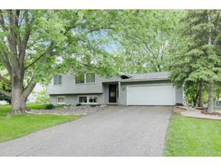 9009 29th Avenue N, New Hope, MN 55427 (#4832955) :: Norse Realty