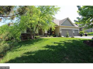 974 Woodview Circle, Carver, MN 55315 (#4833076) :: Norse Realty