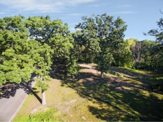 238 Ski Hill Road, Golden Valley, MN 55422 (#4833541) :: Norse Realty