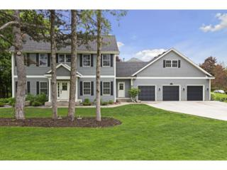 1120 Cove Circle, Minnetrista, MN 55364 (#4833747) :: Norse Realty