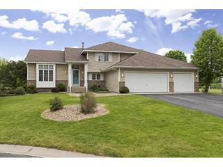 8760 Valley View Place, Chanhassen, MN 55317 (#4833887) :: Norse Realty
