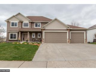 9093 Woodland Drive, Minnetrista, MN 55375 (#4833943) :: Norse Realty