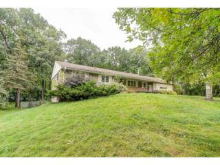 19585 Shady Hills Road, Shorewood, MN 55331 (#4834392) :: Norse Realty
