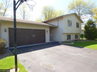 11441 100th Place N, Maple Grove, MN 55369 (#4834481) :: The Preferred Home Team