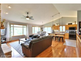 1773 124th Avenue NE, Blaine, MN 55449 (#4834506) :: The Preferred Home Team
