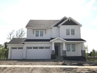 19017 100th Place N, Maple Grove, MN 55311 (#4834507) :: The Preferred Home Team