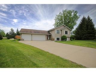 17310 Ipswich Way, Lakeville, MN 55044 (#4834571) :: The Preferred Home Team
