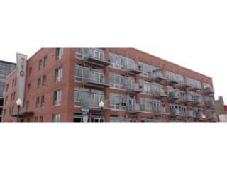 710 N 4th Street W208, Minneapolis, MN 55401 (#4834612) :: The Preferred Home Team