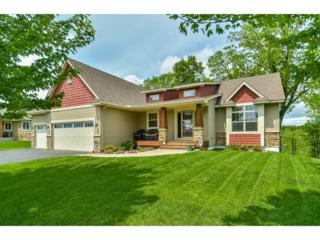 6889 170th Trail NW, Ramsey, MN 55303 (#4834923) :: Team Firnstahl