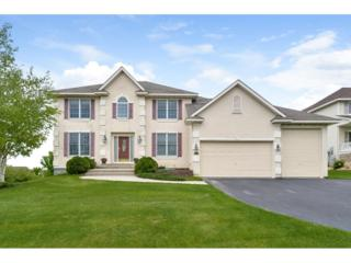 9509 Pheasant Crossing, Minnetrista, MN 55375 (#4834975) :: Norse Realty