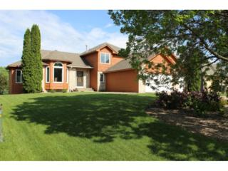 11643 Cottonwood Street NW, Coon Rapids, MN 55448 (#4835083) :: Team Firnstahl