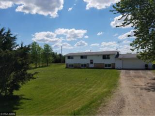 9174 115th Avenue SE, Clear Lake Twp, MN 55319 (#4835270) :: Team Firnstahl