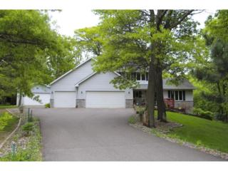 12425 278th Avenue NW, Zimmerman, MN 55398 (#4835373) :: Group 46:10 Twin Cities West