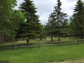 xxxxx Gayle Drive, Little Falls, MN 56345 (#4835459) :: Norse Realty
