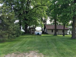 3444 Little Ida Beach Road NW, Leaf Valley Twp, MN 56308 (#4835460) :: Norse Realty