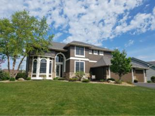 18113 Lamar Court, Lakeville, MN 55044 (#4828954) :: The Preferred Home Team