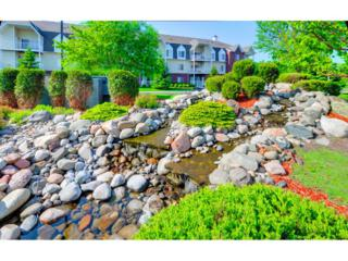 13670 Carrach Avenue #213, Rosemount, MN 55068 (#4832872) :: The Preferred Home Team