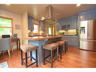 1111 Rhode Island Avenue N, Golden Valley, MN 55427 (#4833585) :: Norse Realty