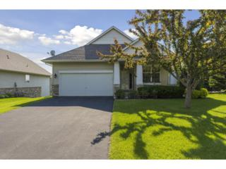17015 Eagleview Drive #67, Lakeville, MN 55024 (#4834736) :: Norse Realty