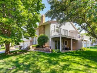 8419 W 100th Street, Bloomington, MN 55438 (#4835130) :: Norse Realty
