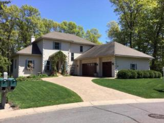 40 Forest Trail, Mahtomedi, MN 55115 (#4821845) :: The Preferred Home Team