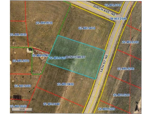 913 14th Street NE, Montgomery, MN 56069 (#4759061) :: The Preferred Home Team